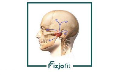 Fizjoterapia w dysfunkcjach aparatu żucia